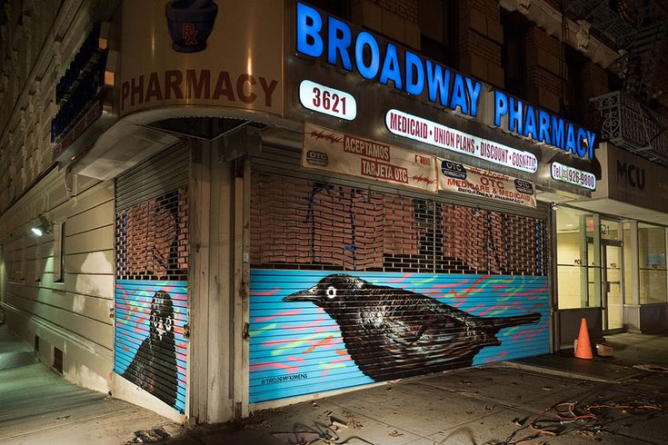 Murals In Harlem Show Birds Like Youve Never Seen Them Before
