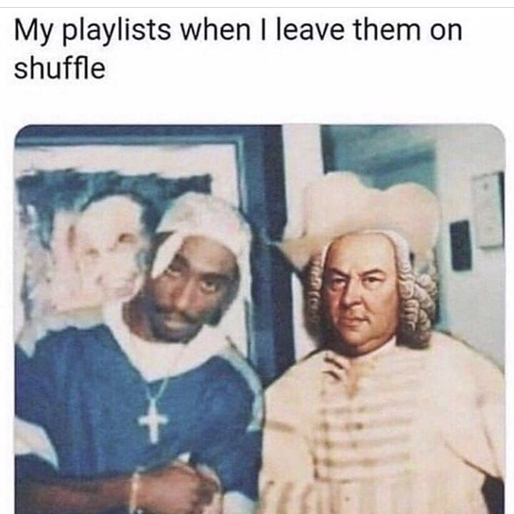 What Music Genre Is Your Fav Follow Me For More Funny Memes Memes Funny Life Laugh Anime Weeb Animememes Mus Hilarious Memes Sarcastic Funny Memes