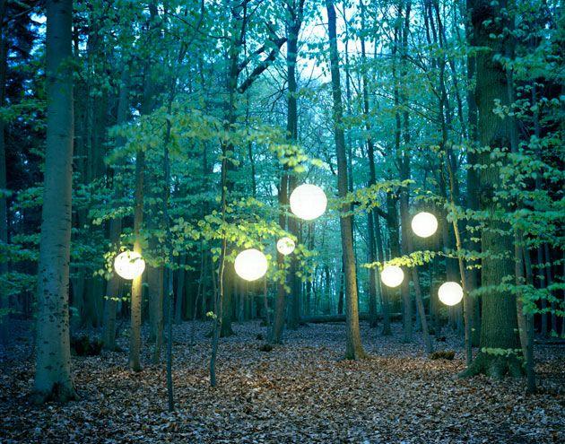 緑の森に輝く美しい照明の姿と光を楽しめるフォトシリーズ「Lights in The Trees」