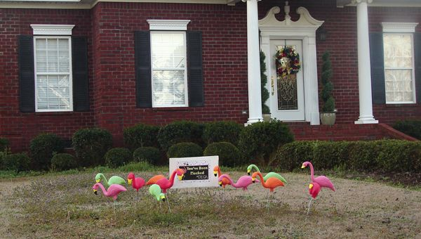 The Demopolis High School DECA club are 'flocking' local residents as a part of a fundraiser to raise money for their conference to Anaheim, Calif.