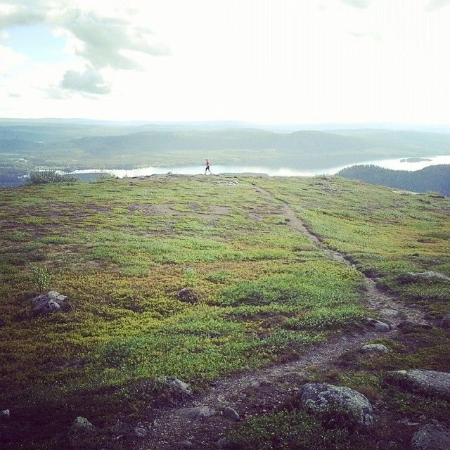 Nalovardo, a good place for trail running and great views, Sorsele in Swedish Lapland.