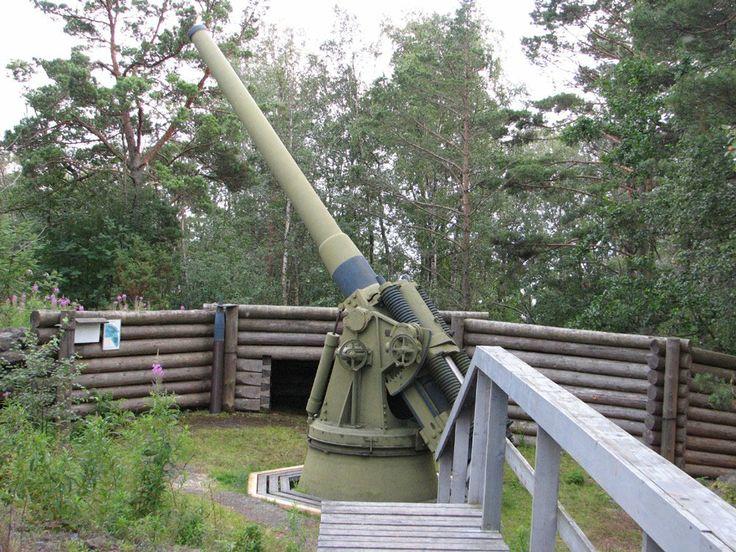The cannon in Ulko-Tammio