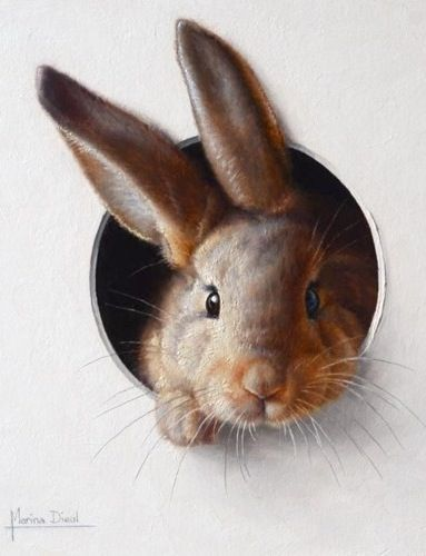 Bunny. Ingrid.