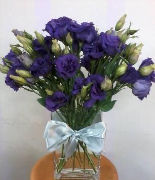Compra online, Floreria en santiago, flores a domicilio, Milrosas.cl | Flores a Domicilio , flores, entrega de flores, rápido y cómodo.