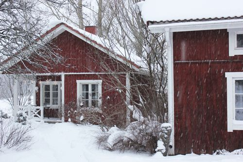 Our lovely sauna cottage in the countryside.