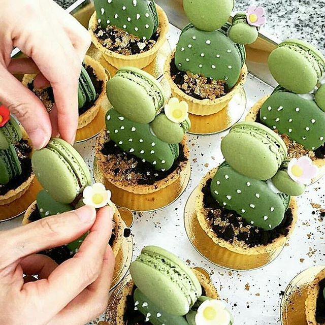 Cactus macarons ❤︎ Leave a like, save this pin and follow more content if you loved this