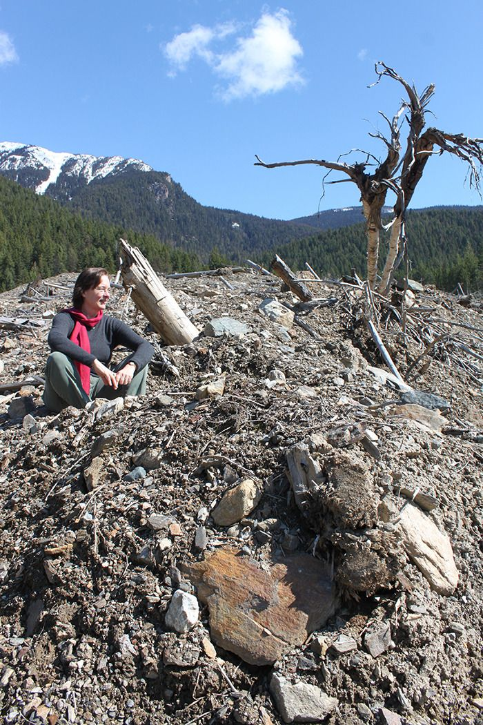 Mandy Bath sits beneath Kootenay Joe Ridge, surveying the destruction wrought by the Johnson's Landing slide of July 12, 2013. Now nearly three years later, she has written a book about her experience called Disaster in Paradise. This weekend she accompanied the Star to the site.