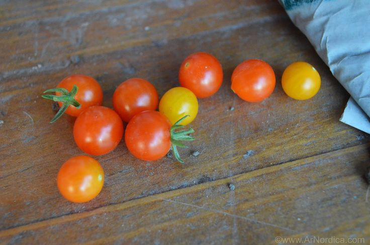 ArNordica: Calendario de siembra - Argentina - Enero 2015 - My Urban Garden // Allotment - Currant tomatoes :) Pretty!