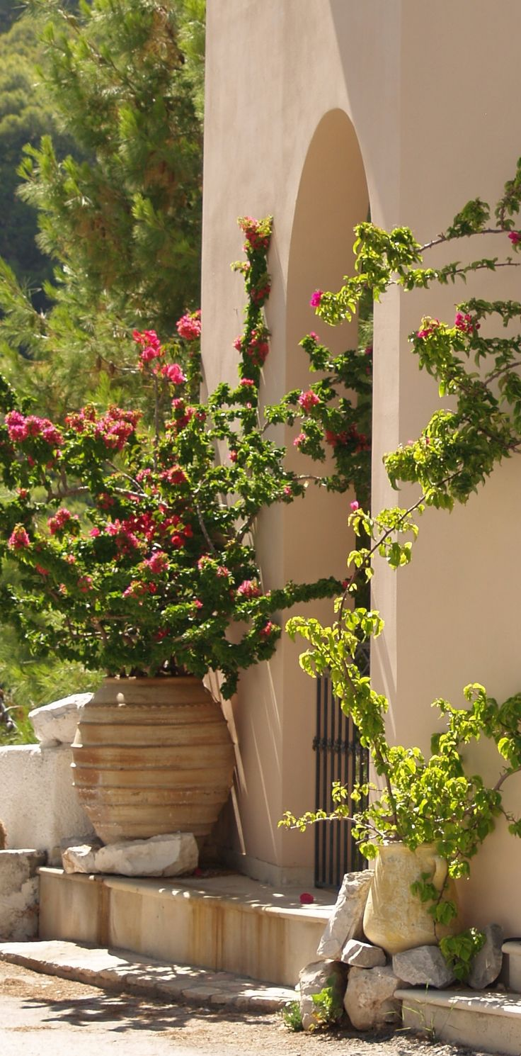"Love the huge ceramic planters with single planting mother always said ""the doorway to your house reflects who you are"" someone beautiful must live here #kefalonia"
