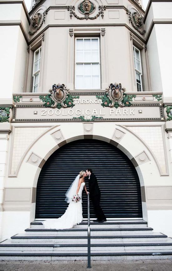 Wedding Photography with a fantastic backdrop - Kirrily and Liams Fun Taronga Zoo Wedding, Sydney, N.S.W. Australia