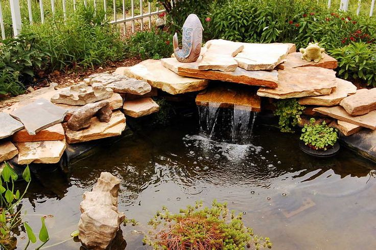 26 best cottage gardens images on pinterest dream garden for Pond fish wanted