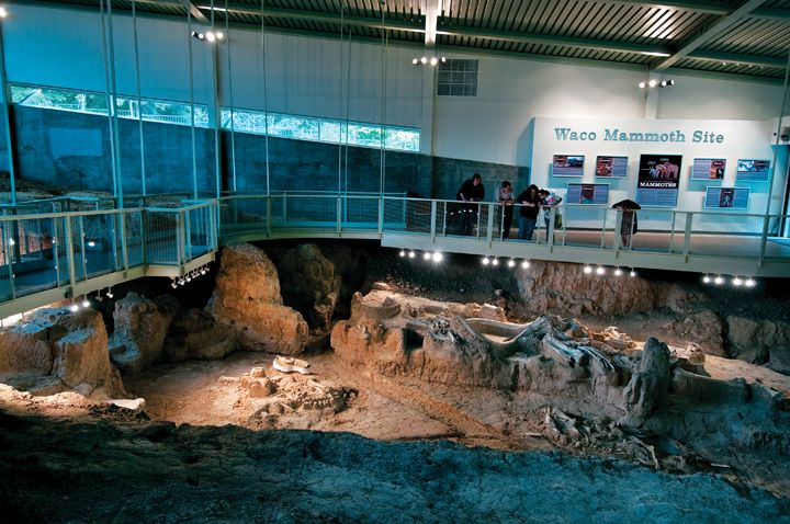 Waco Mammoth Site: Now A National Monument