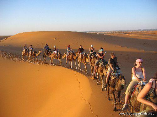 Merzouga, Morocco    The Camelcade - Sahara, Merzouga, Morocco