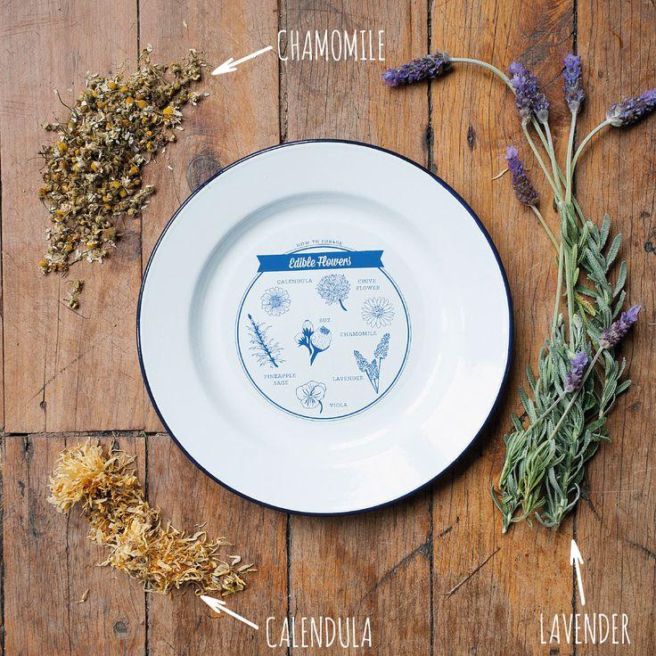 http://tmod.com.au/product/edible-plants-enamel-plate
