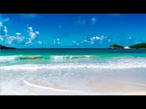 Bruit de la mer, Chant des Oiseaux - Détendre... - YouTube