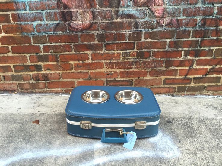 Suitcase Dog Feeder, Small Pet Feeder, Repurposed, Vintage Suitcase, Pet Supplies, Upcycle, Pet Feeding, Elevated Dog Bowl, Raised Dog Bowl by TheCleverRaven on Etsy https://www.etsy.com/listing/254677323/suitcase-dog-feeder-small-pet-feeder