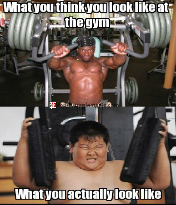 Funny Gym Meme Tumblr : Images about fitness memes on pinterest jokes funny