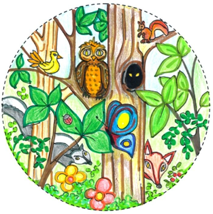 biodiversity drawing competition ideas for kids | Drawing ...