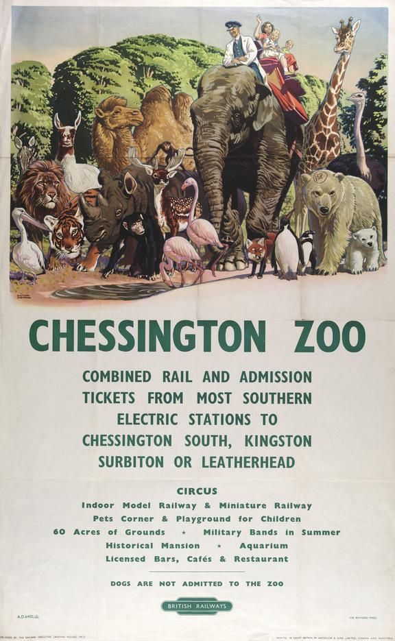 Poster, British Railways (Southern Region), Chessington Zoo by Raymond Sheppard, 1952. Coloured lithograph depicting a procession of zoo animals, including a lion, tiger, penguin, polar bear, camel and rhinoceros. A woman and two children are riding in a howdah on the back of an elephant, which is straddled by a zoo-keeper. Text below, in green lettering, gives details of combined rail and admission tickets, and Chessington Zoo's attractions. British Railways 'totem' logo at t...