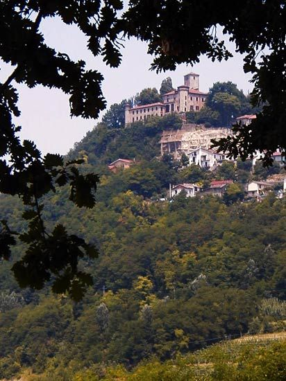 "Medieval Castello di Orsara Bormida, Piemonte. The town's name has ancient roots: from ""Ursaria,"" ""Land of the Bears""  http://www.winepassitaly.it/index.php/en/travel-wineries-piedmont/maps-and-wine-zones/acquese-and-ovadese/itinerary/in-the-land-of-bears#!prettyPhoto"