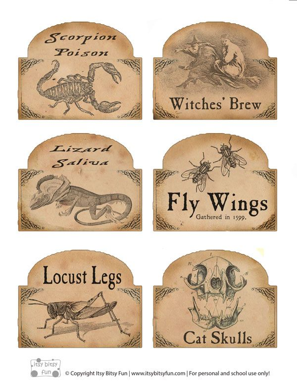 Make your vintage apothecary display with these free Halloween labels - for bottles and potions