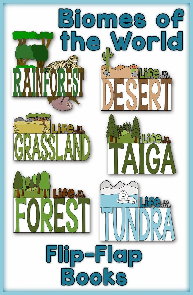 Animals, Biomes, and HOLIDAYS..OH MY! and a Math FREEBIE!