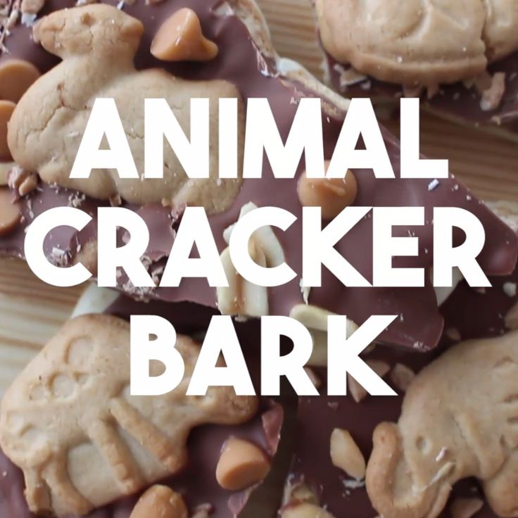 Delicious chocolate and caramel bark decorated with animal crackers! A crunchy, sweet and salty snack!