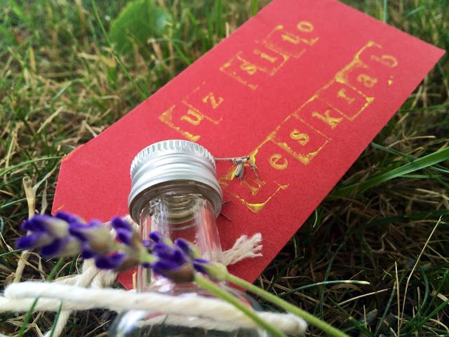 Domácí květinový olejíček na štípance od komárů 'Už si to neškrab!'   Home-Made.Cz