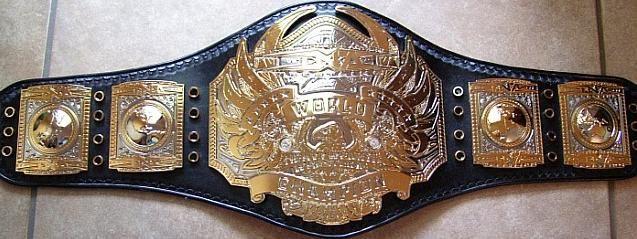 TNA World Heavyweight Championship.JPG