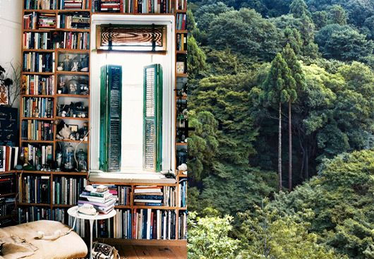 Loving the generous shelves - and the surprising window.