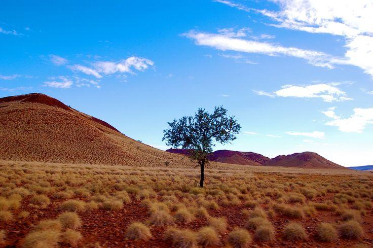 Outback, Near Karratha, Western Australia