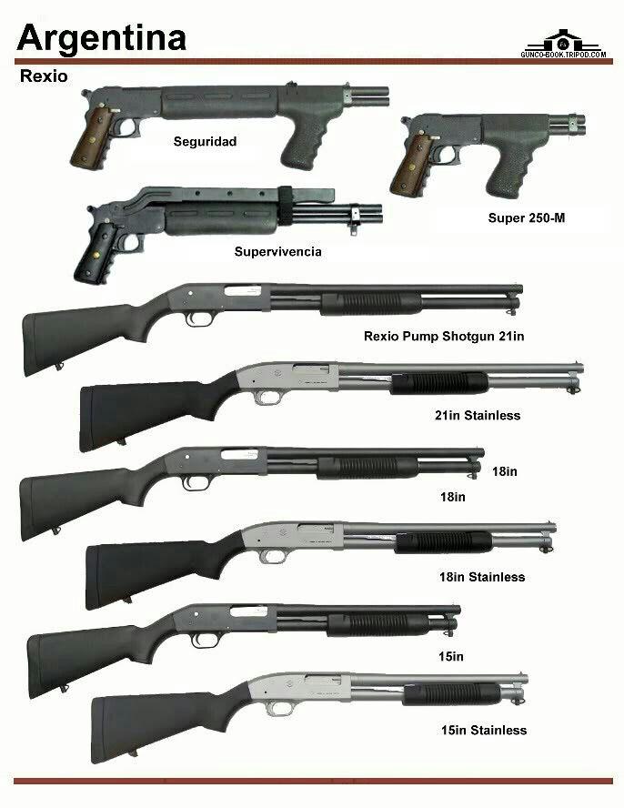 Argentinian shotguns