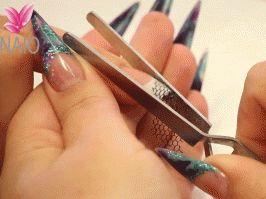 Multifunction 'C' Curve Nail Pinching Tool