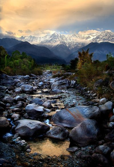 On the Way to Dharamsala, the home of Dalai Lama, Himachal Pradesh, India On the Way to Dharamsala, the home of Dalai Lama, Himachal Pradesh, India (by Michael Foley Photography). Source:...
