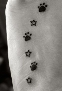 Tattoo I had done on the 1st year anniversary of my first goldens passing. I have a paw print for each of my 3 goldens and, a star to represent the ones I have picked out in the Big Dipper for each of them. The upside down heart of the paw prints is to represent the love we share. I also had the tattoo done on my left foot for just as in life, even when gone, my dogs will always continue to walk alongside me.