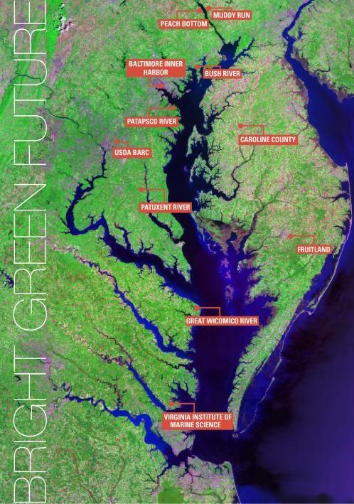 Bright Green Future: Algal Turf Scrubber | Environmental Science & Technology