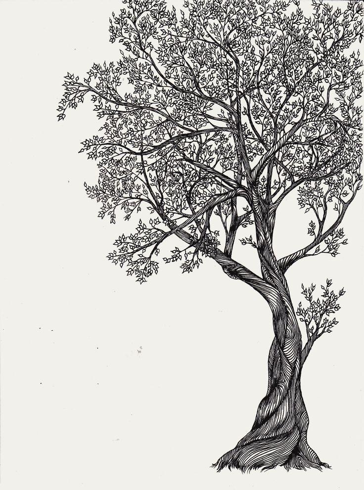 дерево рисунок графика покидала