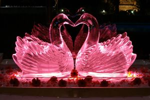 Offer your clients a unique and original atmosphere by creating effortlessly, easily and inexpensively professional ice sculptures by using our ice sculpture molds.
