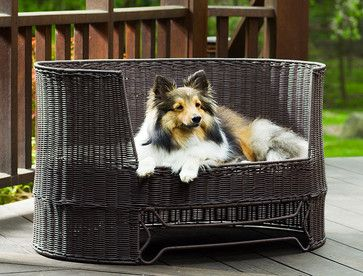 Outdoor Dog Day Bed - Transitional - Pet Beds - Other Metro - The Refined Canine