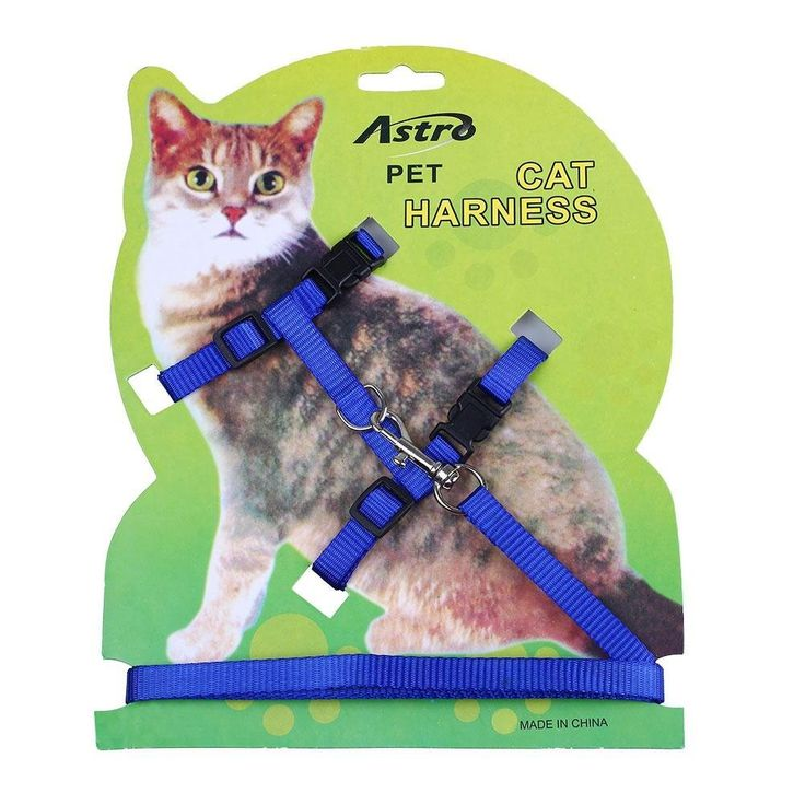Pet Cat Lead Leash Halter Harness Kitten Nylon Strap Belt Safety Rope Adjustable Cat Dog Collar >>> Read more  at the image link.