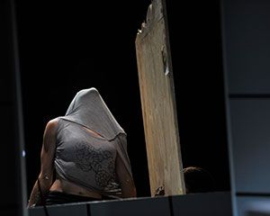 Swallow | National Theatre of Parramatta