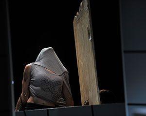 Swallow | National Theatre of Parramatta