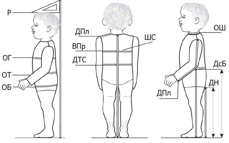 Измерение фигуры у младенцев часто оказывается более сложной задачей, а результаты получаются менее точные, чем при измерении детей постарше. Новорожденные и малыши в возрасте до 18 месяцев еще не умеют или только учатся стоять, прямо сидеть и активно участвовать в измерении фигуры. Рост у новорожденных и детей первых месяцев жизни измеряют в положении лежа, ноги [...]