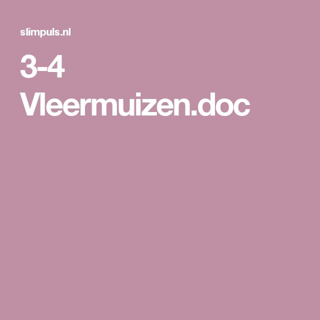 3-4 Vleermuizen.doc