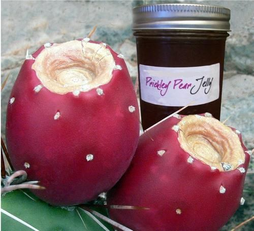 Prickly pear jelly - cut down on the sugar!