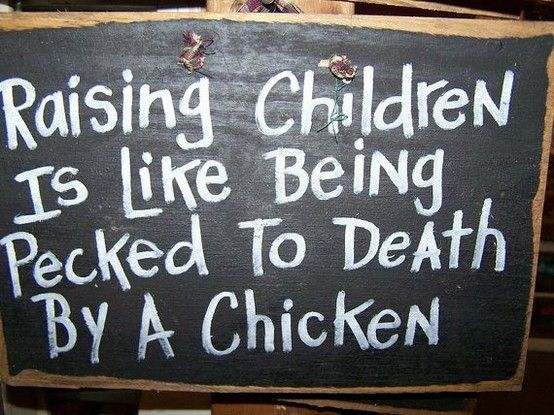 Chicken Funny Signs Quotes: 231 Best Quotes Images On Pinterest