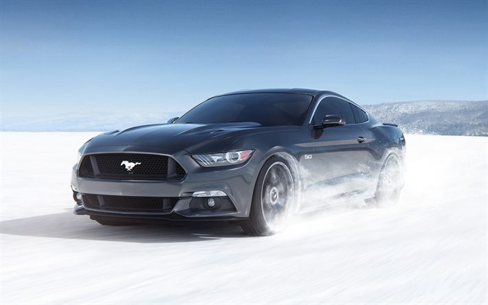 Ford Mustang, 2018, gray sports coupe, winter driving, snow riding, sports car, USA, Ford