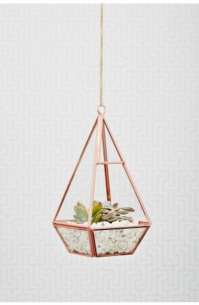 Oola Rose Gold Terrarium