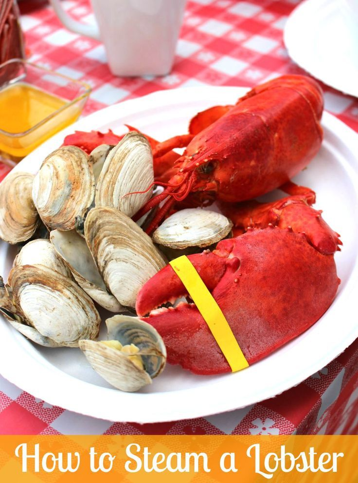 How do you steam a lobster? Learn how to choose a lobster, how to steam a lobster perfectly depending on its weight, and the proper temperature for a steamed lobster from a SoFabFood Cooking Expert.
