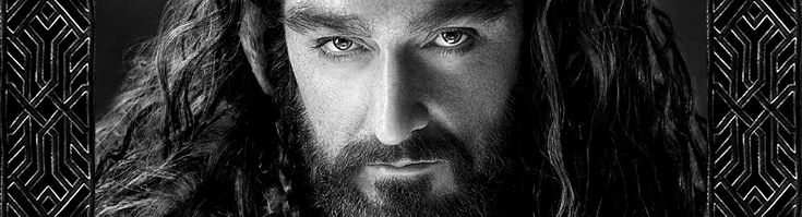 Thorin the second hottest thing in The Hobbit - loved his character strong, commanding, noble...
